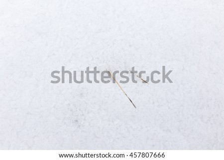 Snow in nature as a background - stock photo