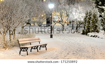 snow on trees in Riga park by night - stock photo