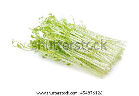 Snow Pea Sprouts isolated on white Background - stock photo