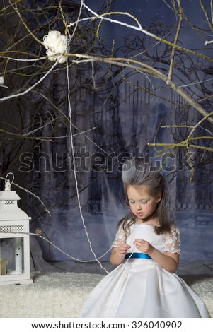 Snow Princess (Queen) - beautiful little girl with a winter makeover in a white dress with blue ribbon, on a background gate in fabulous frozen forest