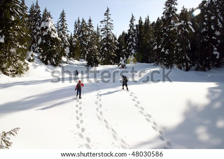 Snow shoe hikers cross the snow mountain in BC, Canada.