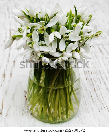 snowdrops in glass on a wooden background - stock photo