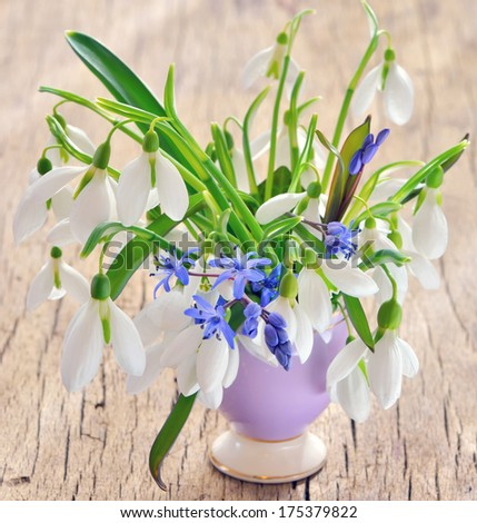 snowdrops in vase on old wood - stock photo