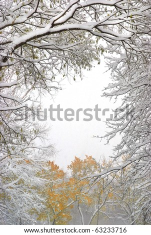 snowfall in the fall forest - stock photo