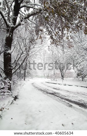 snowfall on country road - stock photo