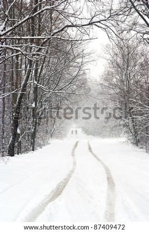 snowfall on the country road - stock photo