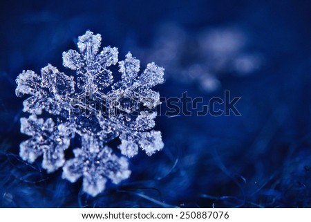 snowflake crystal natural snow - stock photo
