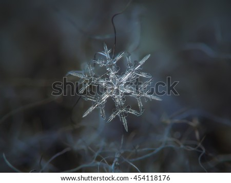 Snowflake glowing on dark textured backdrop. Super macro photo of real snow crystal: small stellar dendrite with bright center and symmetrical arms. Background: dark grey woolen fabric, natural light.