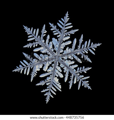 Snowflake isolated on black background: macro photo of real snow crystal, captured on glass with LED back light. This is large fernlike dendrite snowflake with complex structure and lots of details. - stock photo