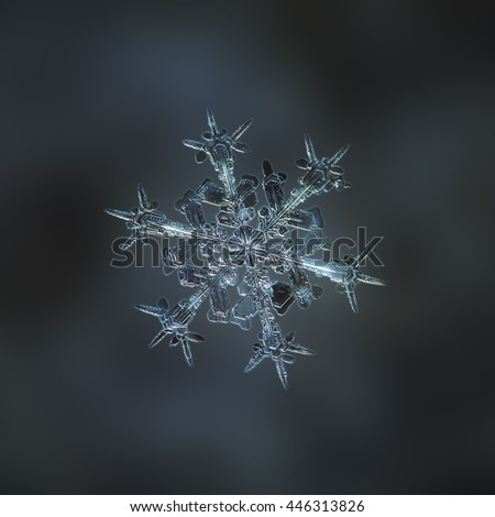 Snowflake macro photo: real snow crystal of stellar dendrite type with sharp ornate arms, glittering on smooth dark background. This is medium size snowflake, around 4 millimeters from tip to tip.