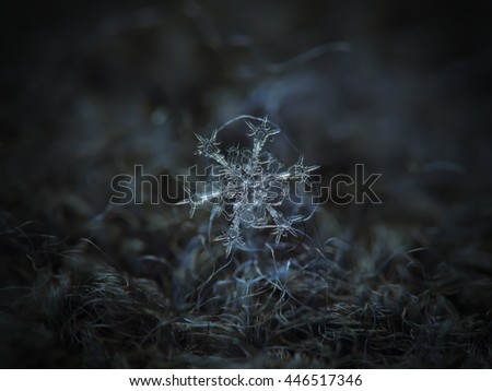 Snowflake on dark textured background: macro photo of real snow crystal on dark woolen fabric in natural light. This is medium size, stellar dendrite snowflake with complex structure and ornate arms. - stock photo
