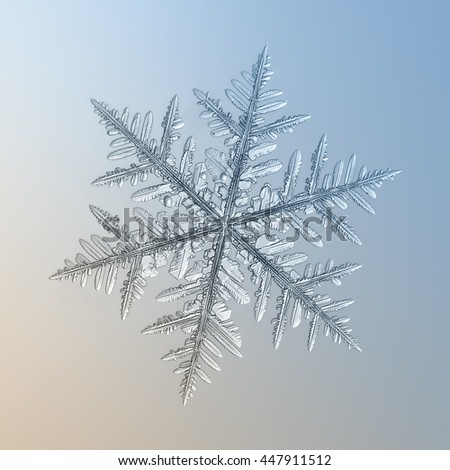 Snowflake on smooth gradient background: macro photo of real snow crystal on glass surface with LED back light. This is big fernlike dendrite snowflake with complex structure and highly detailed arms. - stock photo