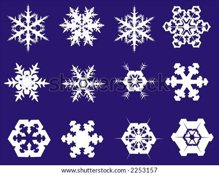 snowflakes in eight different shapes