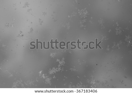 Snowflakes on glass. Snowflakes falling. Winter background. Hoar-frost background. Winter background with snowflakes festival illustration, glass background and motion blur. Black and white. - stock photo