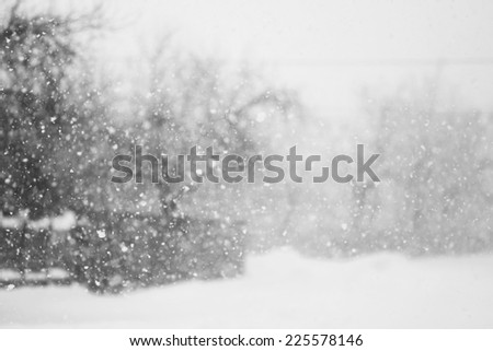 Snowing a lot in the lane over the trees and houses  - stock photo