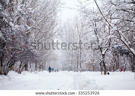 Snowing landscape in the park - stock photo