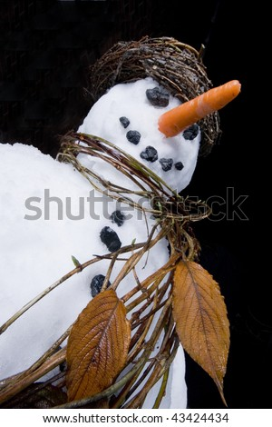 Snowman close-up with scarf and hat made from natural plant materials and a black night time background. - stock photo