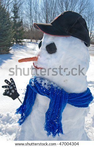 snowman in the country - stock photo