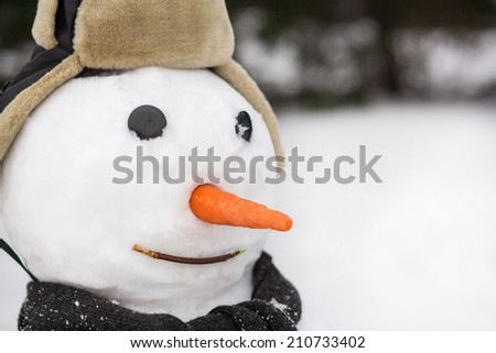 Snowman in the forest - stock photo
