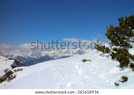 Snowshoe hike between Gasselhohe and  Rippetegg peak, Austria - stock photo