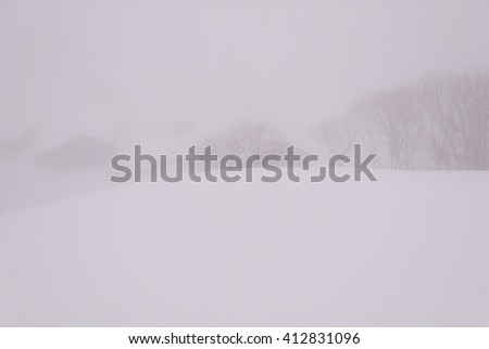 Snowstorm on a snowy pasture: during the winter travel/Snowstorm on a snowy pasture - stock photo
