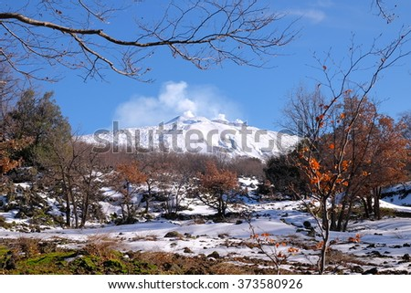 snowy and steaming Etna Volcano from National Park, Sicily  - stock photo