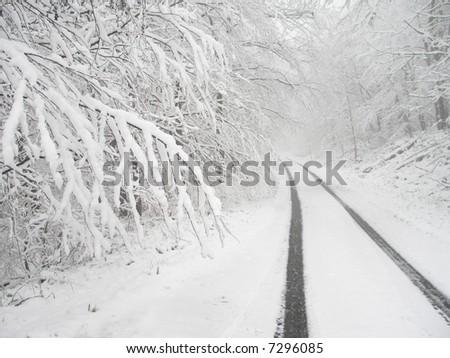 Snowy country lane - stock photo