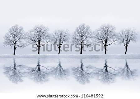 Snowy Landscape - stock photo