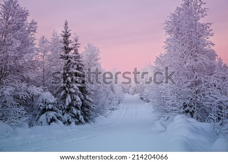 Snowy landscape from Finland, Lapland - stock photo