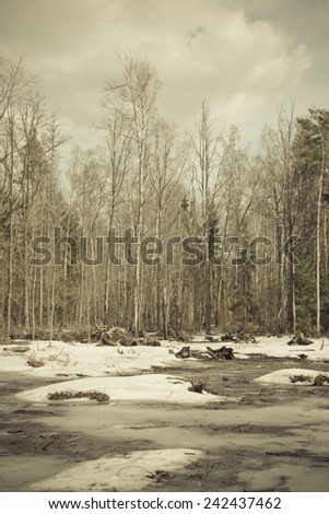 Snowy landscape in the spring forest. Toned. - stock photo