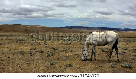 Snowy mountains in the outback of Australia - stock photo