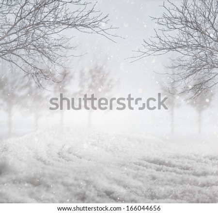 Snowy nature winter background - stock photo