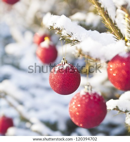 snowy pine tree decorated for xmas Christmas toy on  branch of f - stock photo