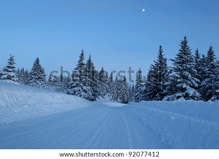 Snowy plowed road on a cold winter evening with a moon in a clear sky and spruce trees. - stock photo