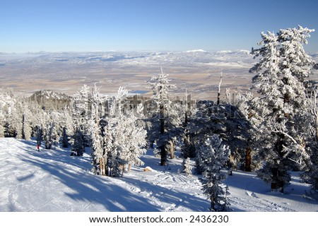 Snowy ski slope with two skiers among snow-encumbered pines extending into Nevada desert at Lake Tahoe. - stock photo