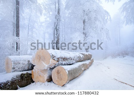Snowy stack of timber in a forest road. - stock photo