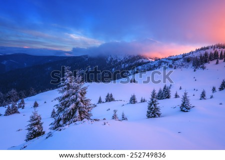 snowy trees on winter mountains - stock photo
