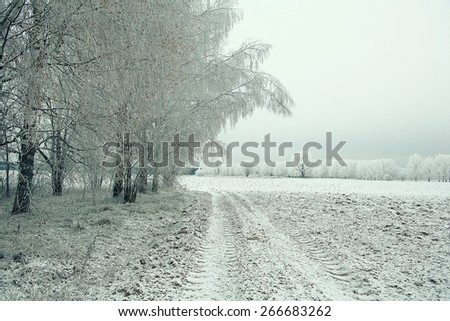 Snowy winter road in a field - stock photo