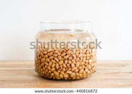 soaked soy bean  - stock photo