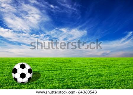 Soccer ball on grass - stock photo