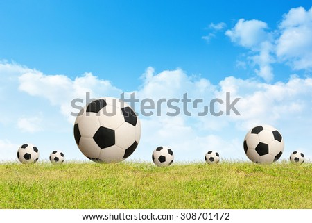 Soccer ball on grass sky background.