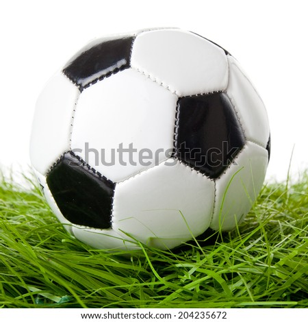 soccer ball on the green field.  ball on the grass