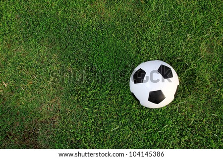 Soccer ball on the lawn .