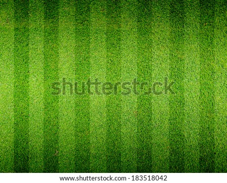 Soccer football grass field - stock photo