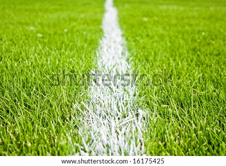soccer or football stripes on beautiful green grass - stock photo