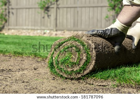 Sod for new lawn - stock photo