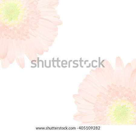 Soft blurred of gerbera flowers in pastel tone for background. - stock photo