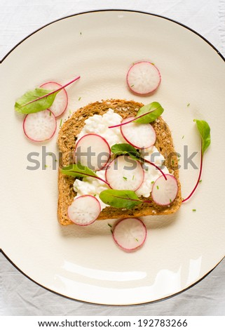 Soft cheese, radishes and chard on bread - stock photo