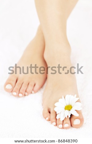 Soft female feet with pedicure and flowers close up - stock photo