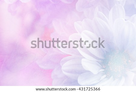 Soft flower background made with color filters, unfocused - stock photo